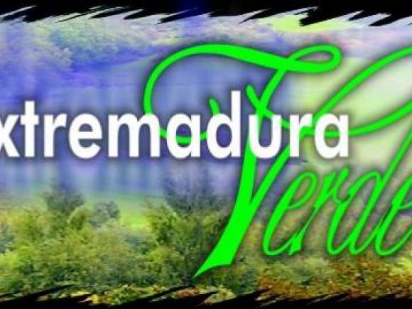 REFORESTACIÓN DE TIERRAS