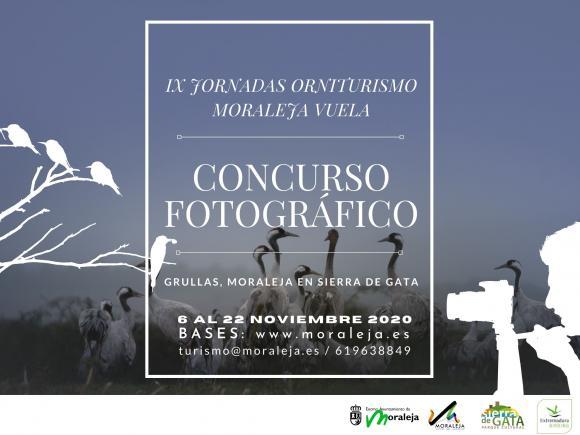 CONCURSO FOTOGRÁFICO GRULLAS, MORALEJA EN SIERRA DE GATA