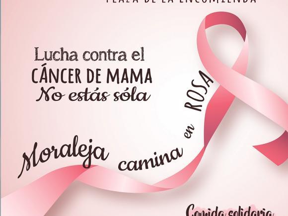 V MARCHA LUCHA CONTRA EL CANCER DE MAMA