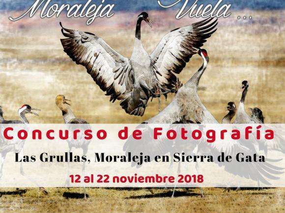 BASES DEL CONCURSO FOTOGRÁFICO GRULLAS, MORALEJA EN SIERRA DE GATA