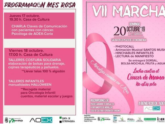 VII MARCHA LUCHA CONTRA EL CANCER DE MAMA