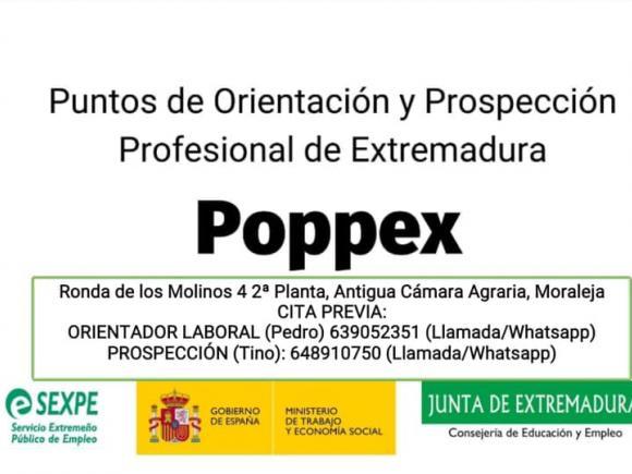 PUNTOS DE ORIENTACIÓN Y PROSPECCIÓN PROFESIONAL DE EXTREMADURA POPPEZ EN MORALEJA