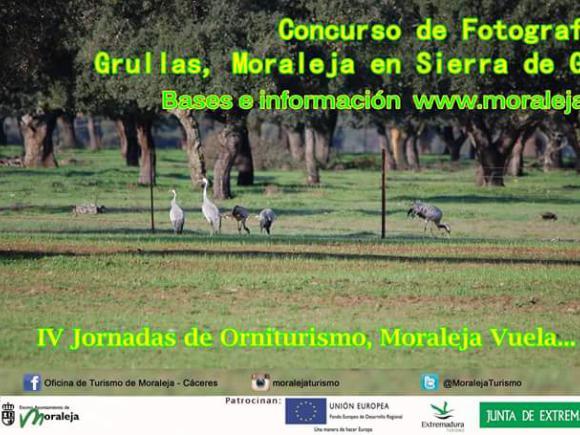 CONCURSO DE FOTOGRAFÍA GRULLAS MORALEJA EN SIERRA DE GATA