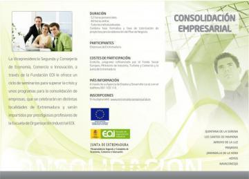 PROGRAMA DE CONSOLIDACIÓN EMPRESARIAL. PROGRAMACIÓN EN EL TABLON DE ANUNCIO DE ESTA PÁGINA WEB